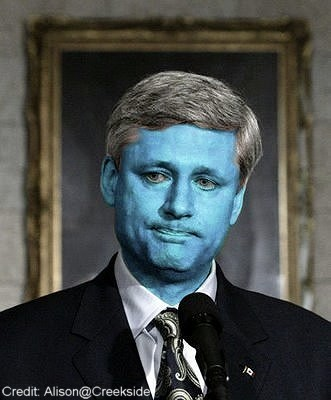 Harper spoiled.jpg