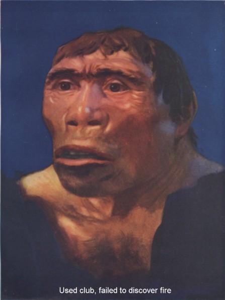 Iggy ape.jpg