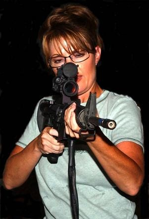 Palin reloaded.jpg