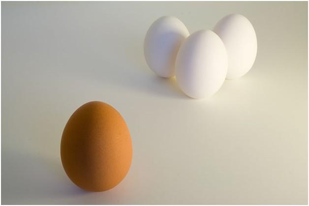 Racism eggs.jpg