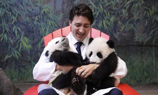 Trudeau with pandas.jpg