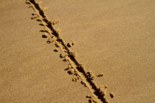 sand line.jpg